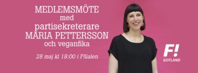 Medlemsmöte med partisekreterare Maria Pettersson